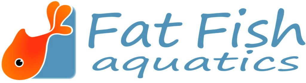 Fat Fish Logo Main